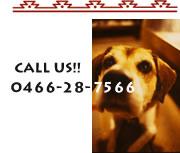 CALL US!! 0466-28-7566